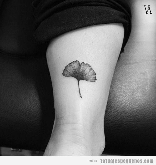 Tatuajes pequeños de hojas de ginkgo