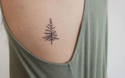 Tatuajes pequeños de abetos para hombre y mujer