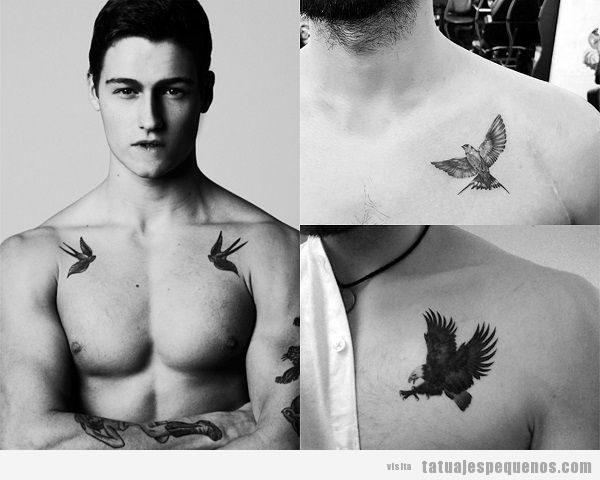 Tatuajes pequeños en el pecho para hombres de pájaros
