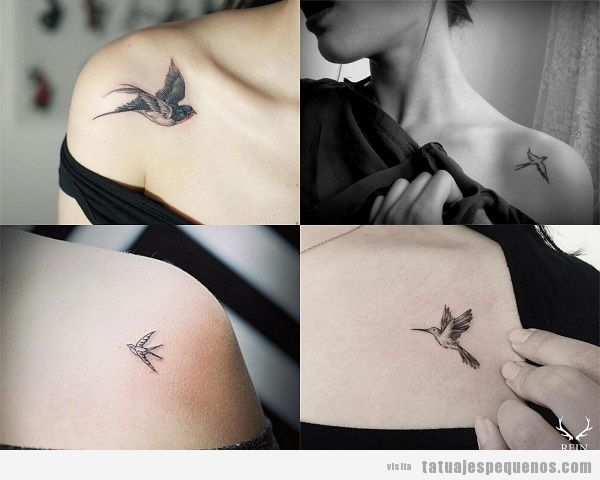 Tatuajes pequeños de pájaros en la clavícula