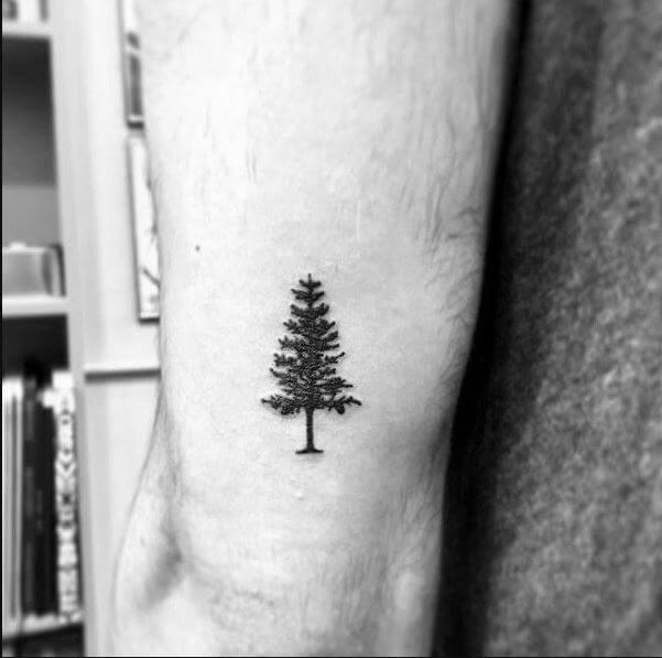 Tatuajes pequeños hombre 2019 pino